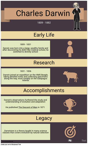 History Infographic Example