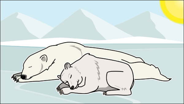 Missä Polar Bears Live Lesson Plans