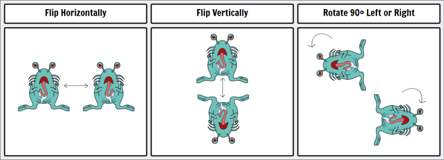 Rotations and Flips storyboard software help