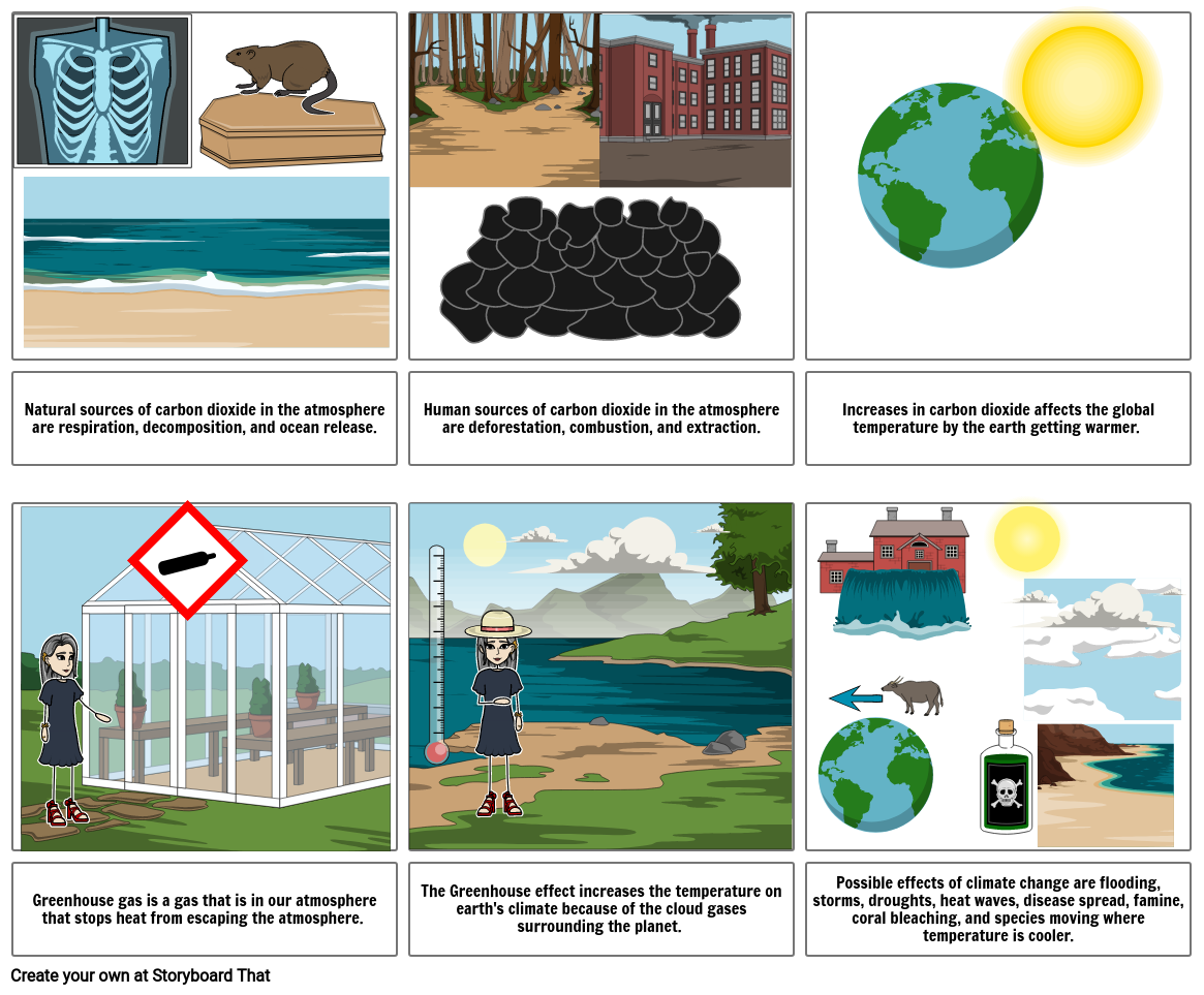 Science storyboard