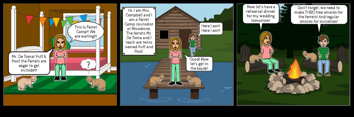 Ferret Camp