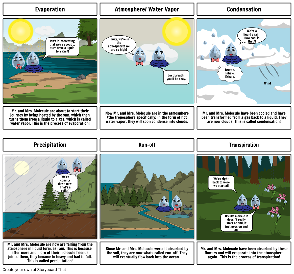 Mr. and Mrs. Molecule's Journey Through the Water Cycle