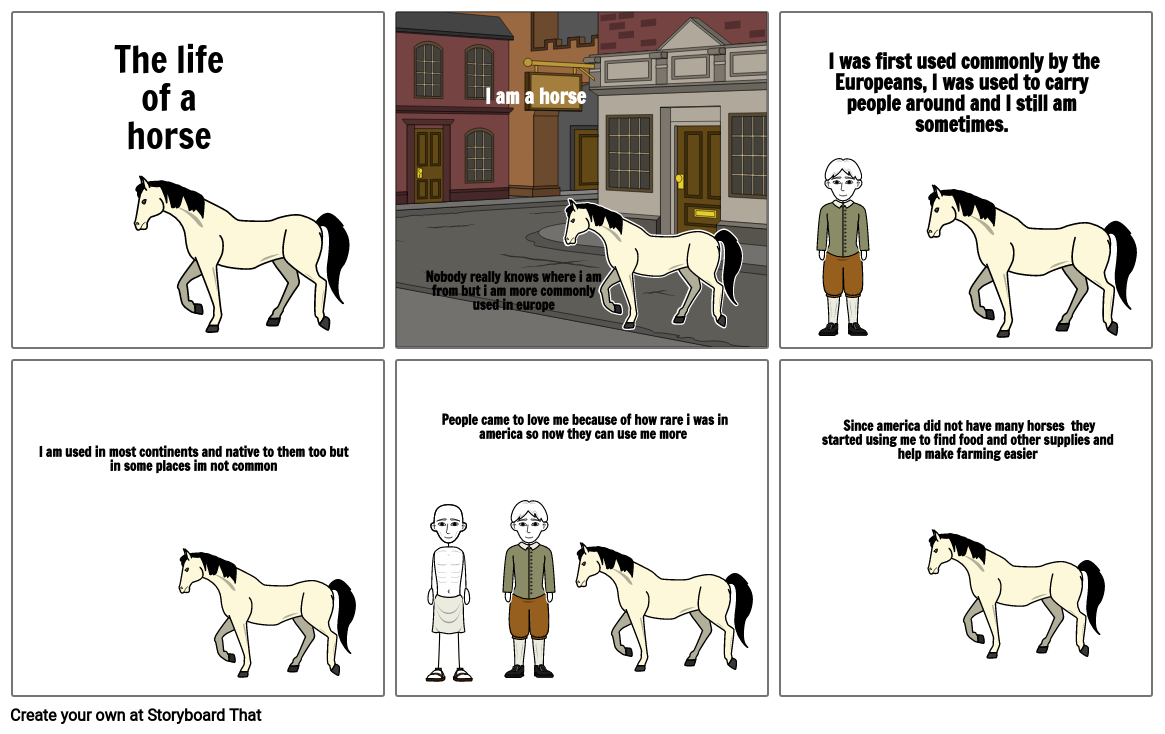 The life of a horse