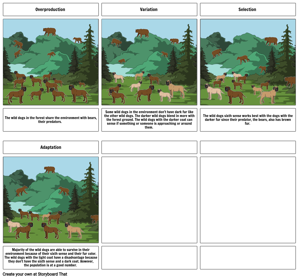 Cartoon Evolution Project