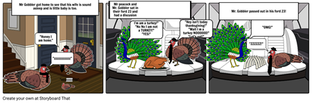Steven Gartland Turkey Storyboard