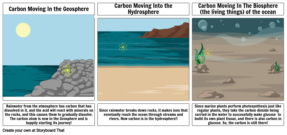 Biogeochemical Carbon Cycle Story Board Project