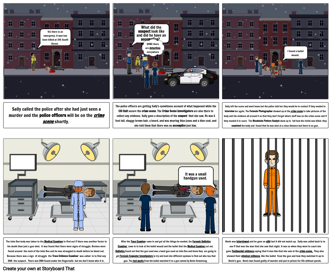 Forensic Comic Strip Project
