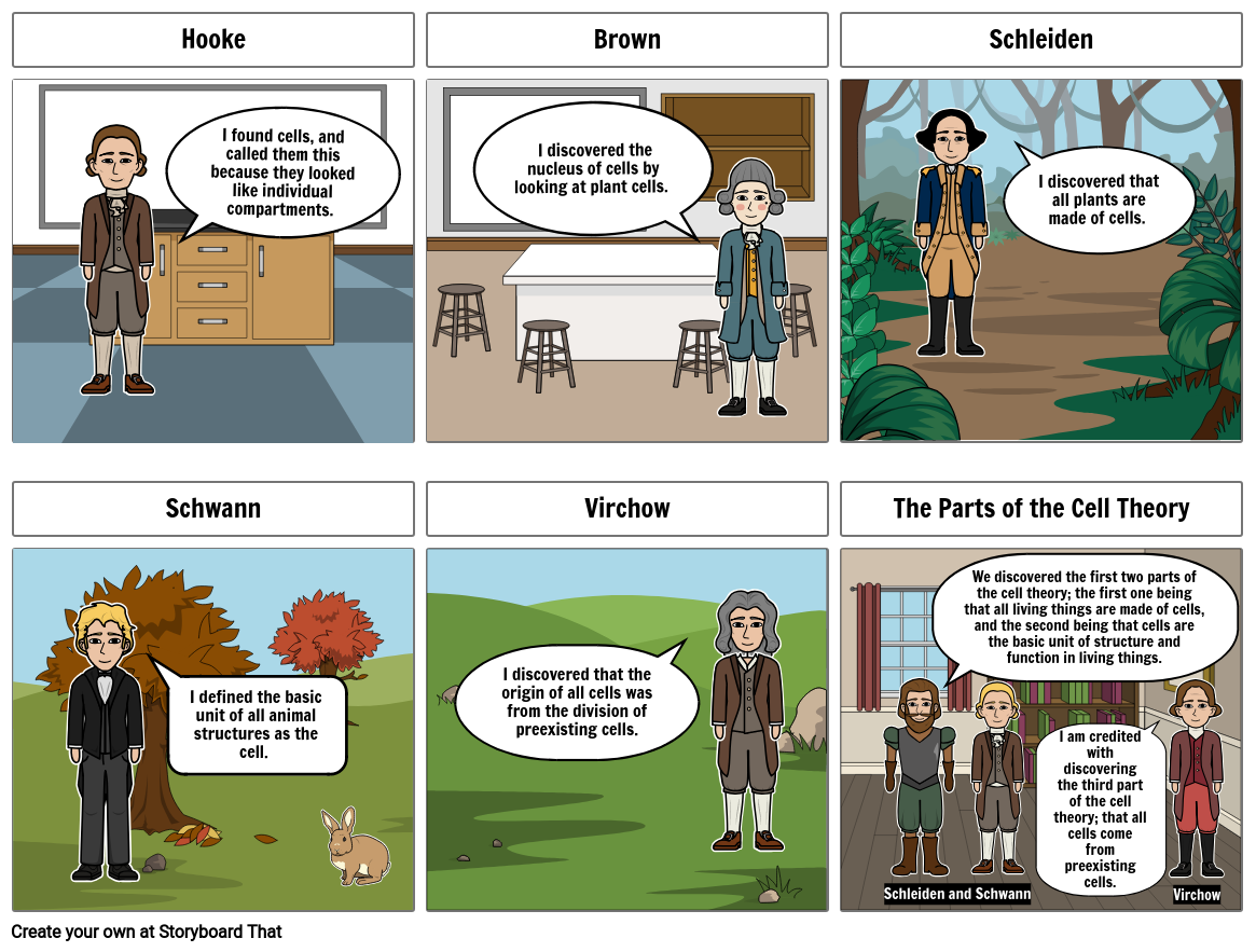Cell Theory Storyboard Project