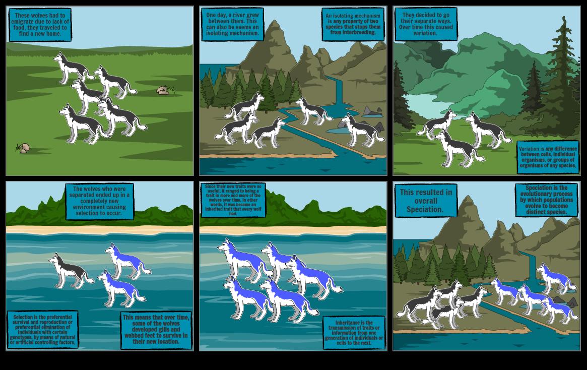Speciation Comic Strip