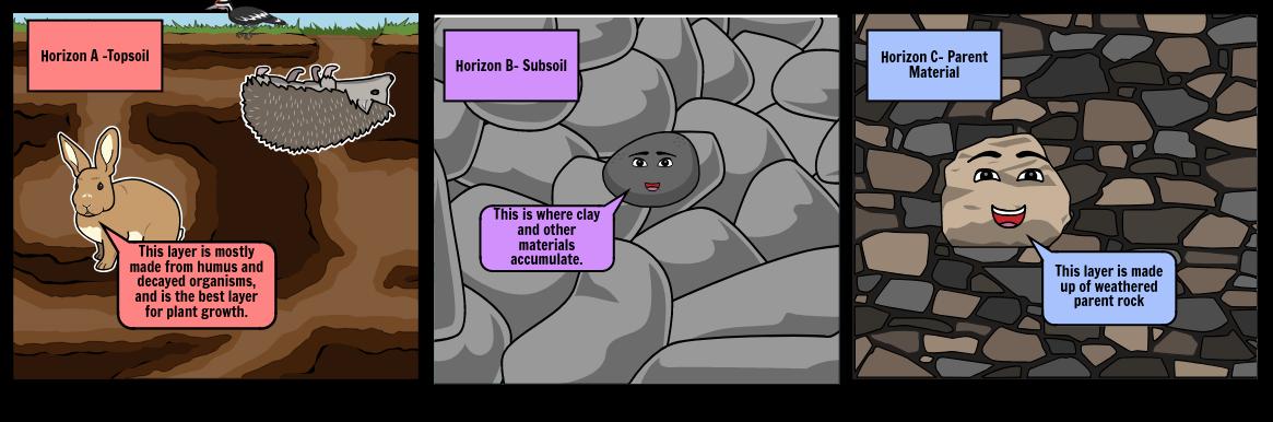 Soil Layers Storyboard by 8maizahali