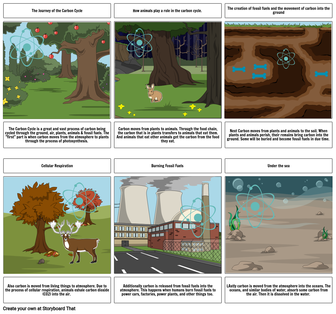 Carbon Cycle Stroyboard