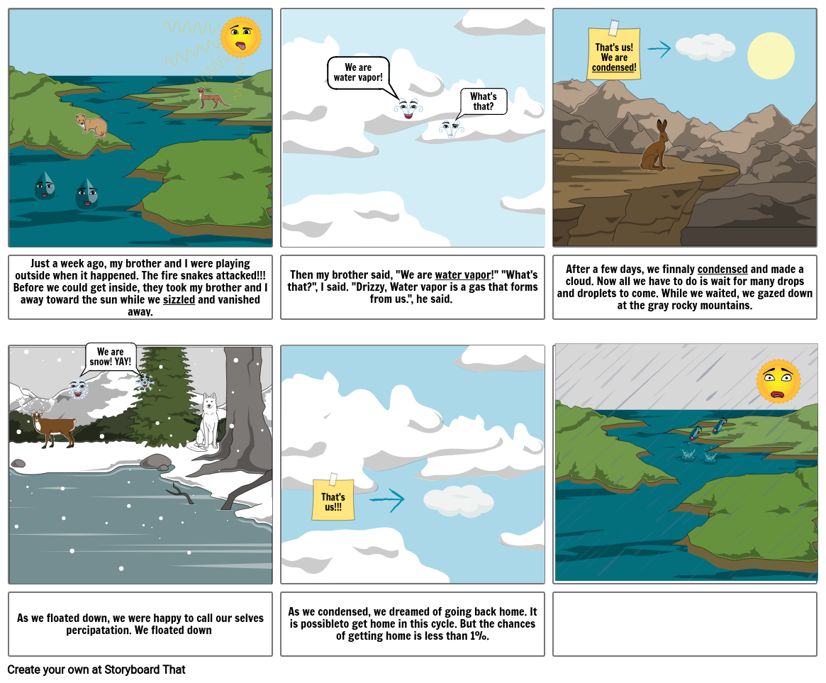 The Adventure of Drizzy and the Water Cycle