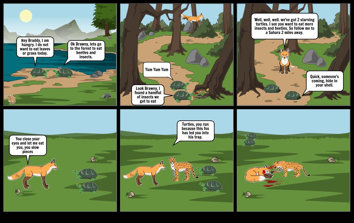 Ali Murtaza's Turtle story