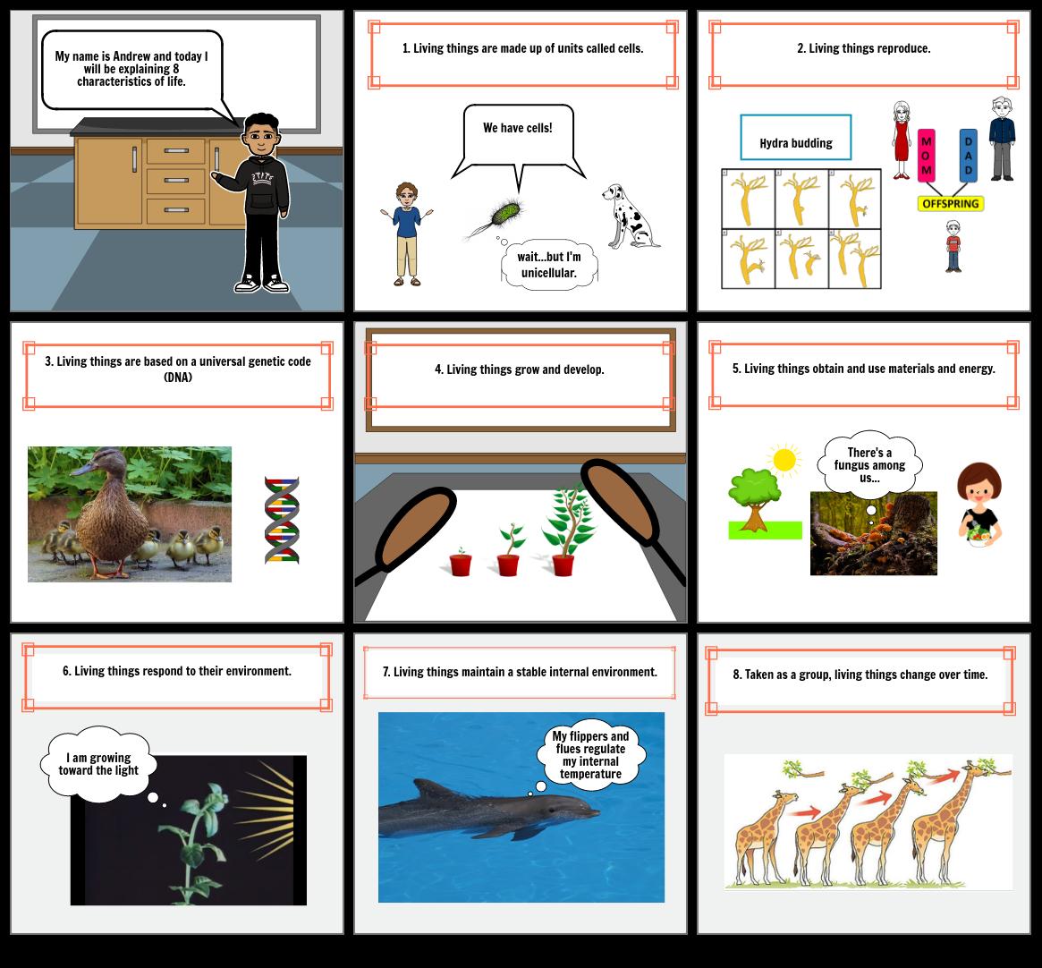 Biology 8 Characterisitcs of Life