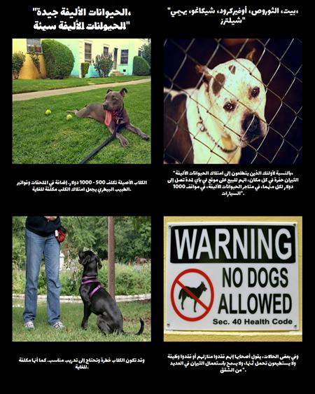 الحيوانات الأليفة جيدة، سيئة الحيوانات الأليفة - دمج النصوص