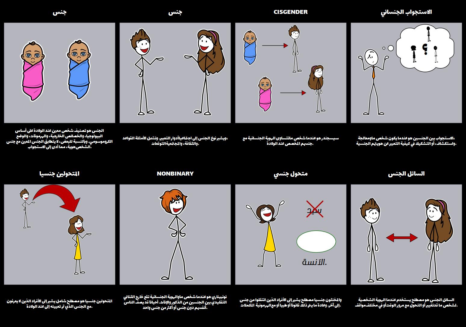المصطلحات الجنسانية