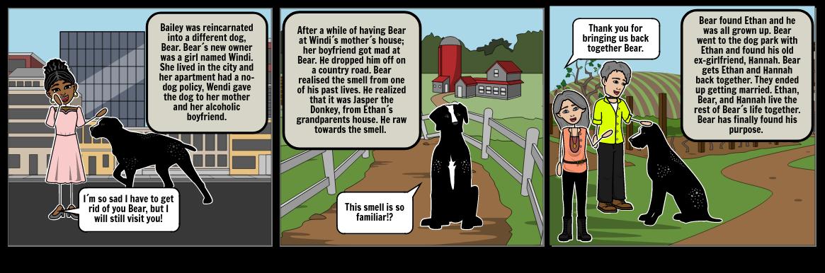 Book Report Storyboard
