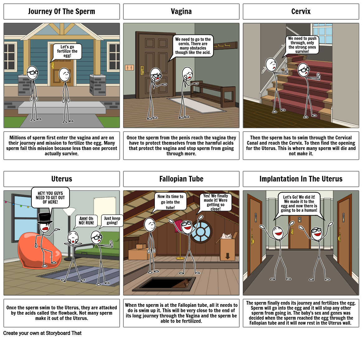 Journey of the Sperm Storyboard