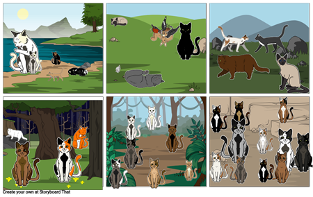 story board elements project