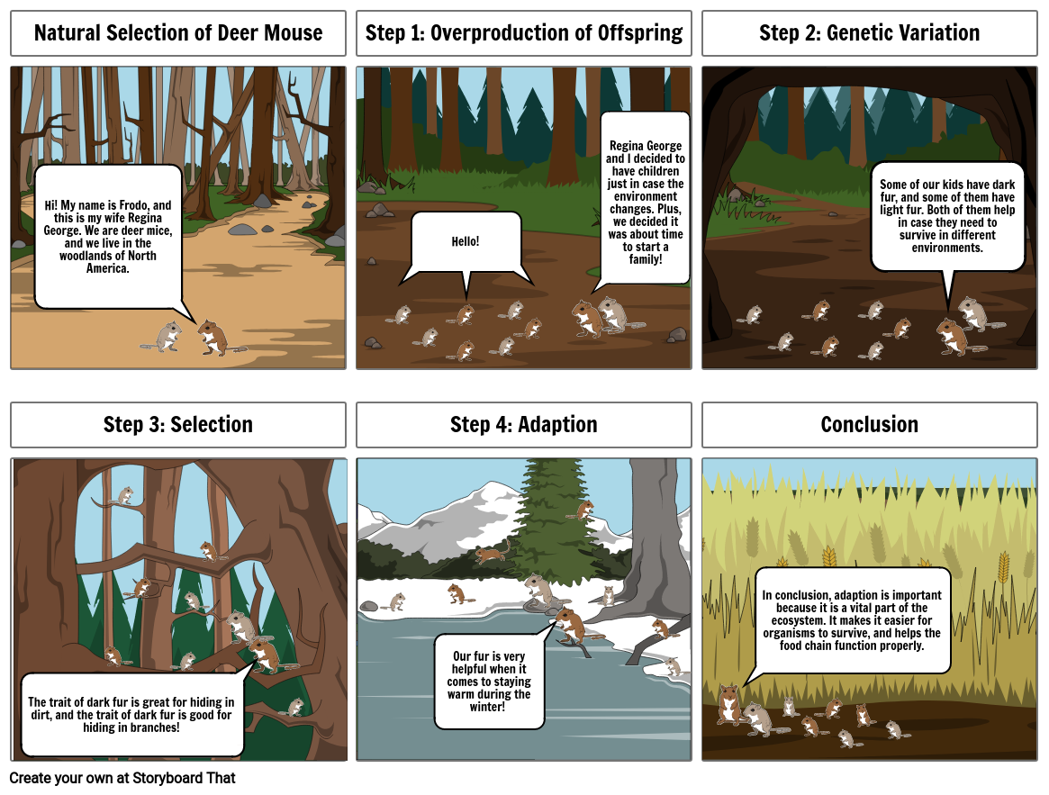 Science 8th Grade Evolution