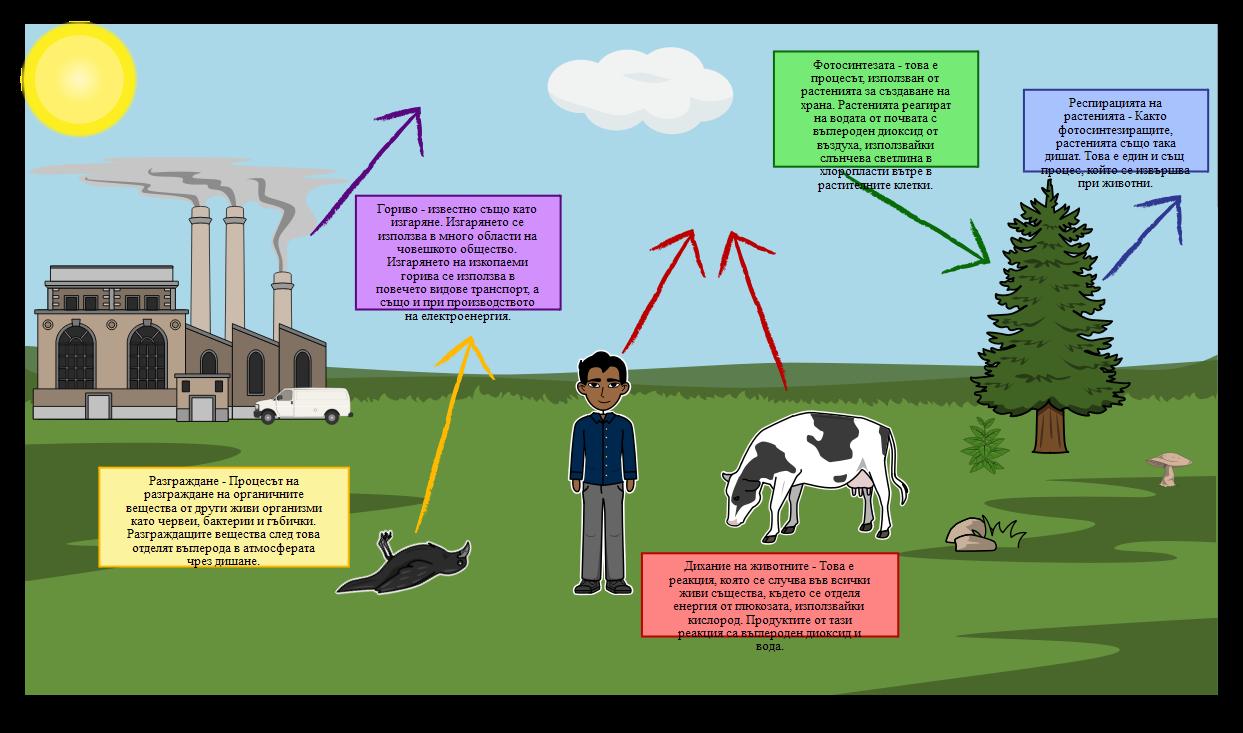 Диаграмата на Въглеродния Цикъл