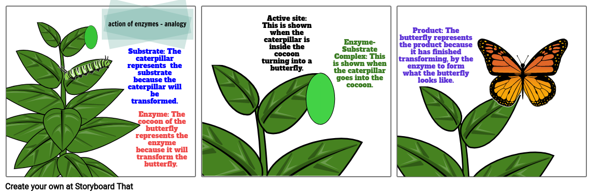 action of enzymes - analogy
