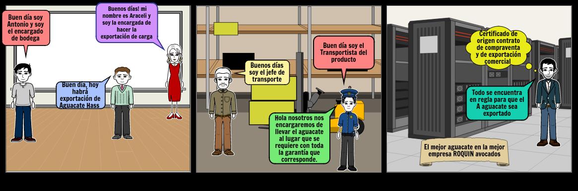 Exportación de aguacate Hass ROQUIN avocados