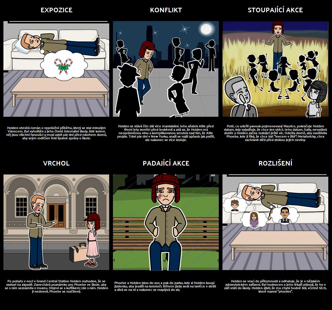 Kdo Chytá v Žitě - Plot Diagram