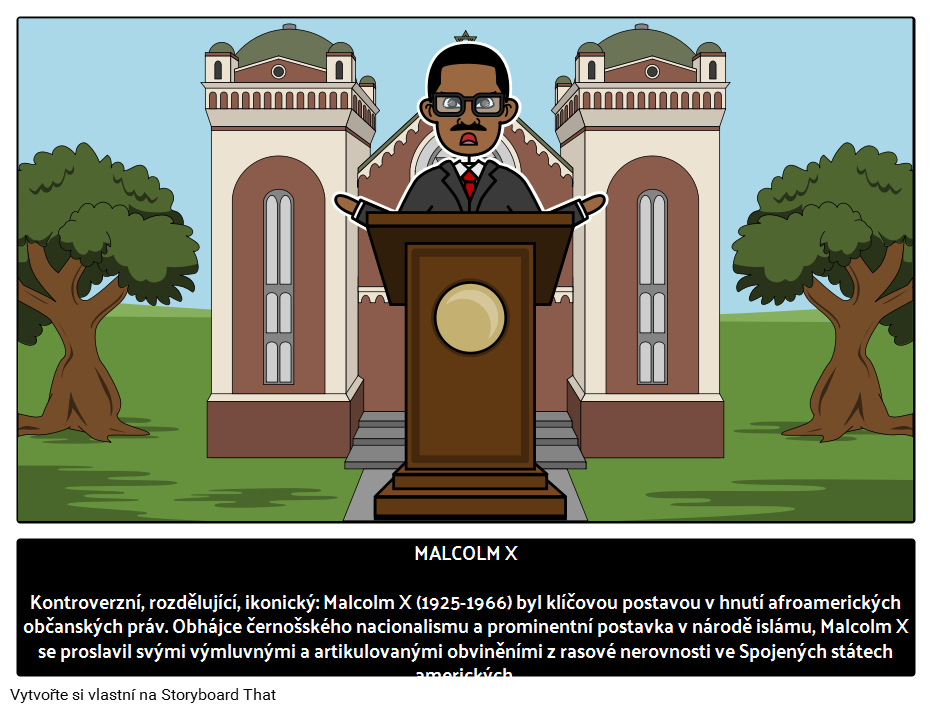 Malcolm X Zivotopis Malcom X Citaty Vlivni Lidri