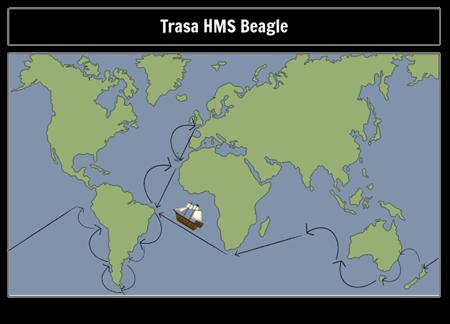 Trasa Beagle