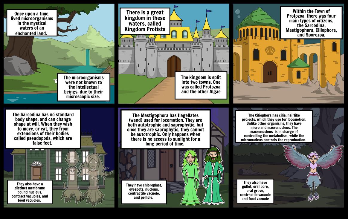 Kingdom Protista & the Towns Protozoa and Algae Part 1