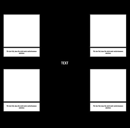4 Zellspinnenkarte
