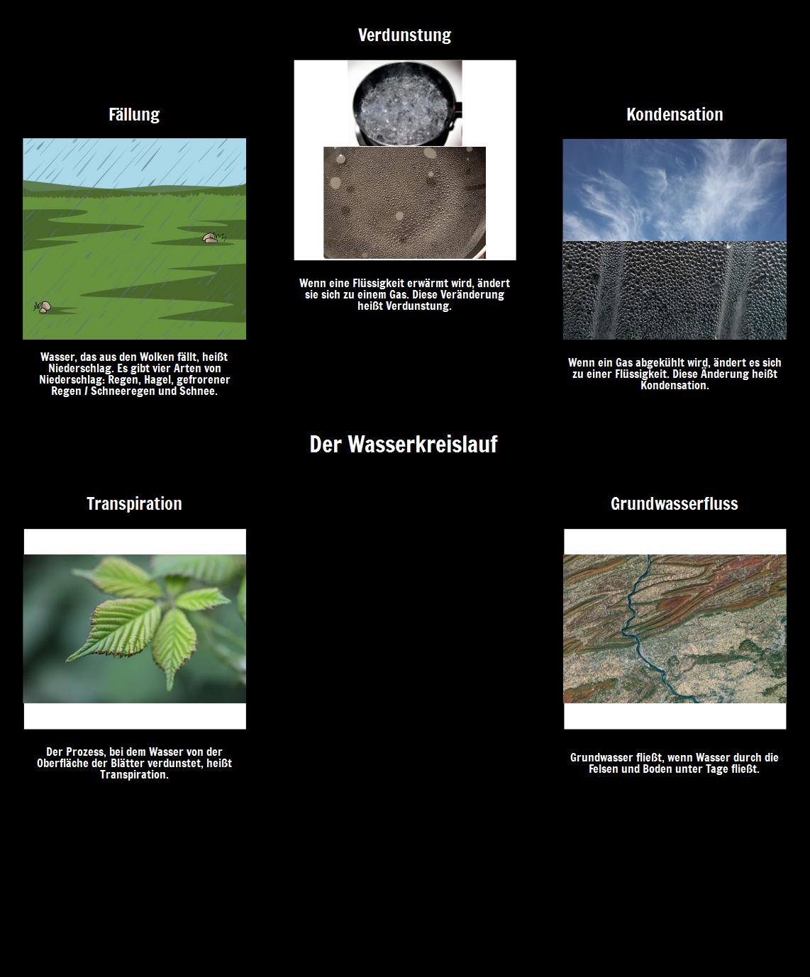 Das Wasser-Zyklus-Vokabular
