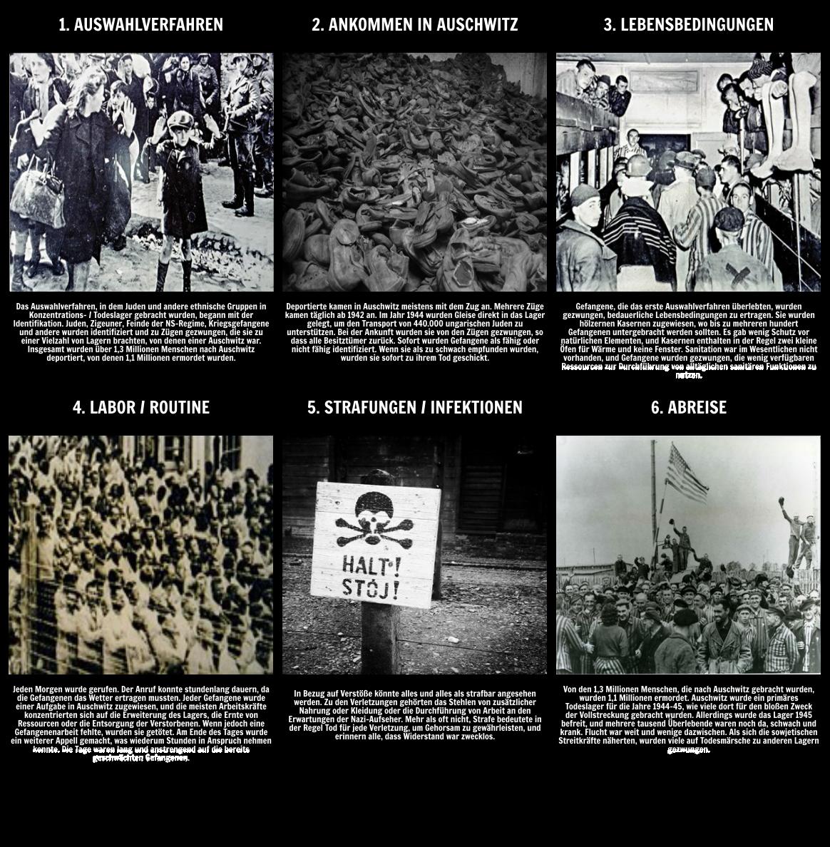 Die Geschichte des Holocaust - Leben in Auschwitz