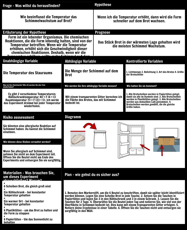 Moldy Brot Hoheres Beispiel Storyboard Von De Examples