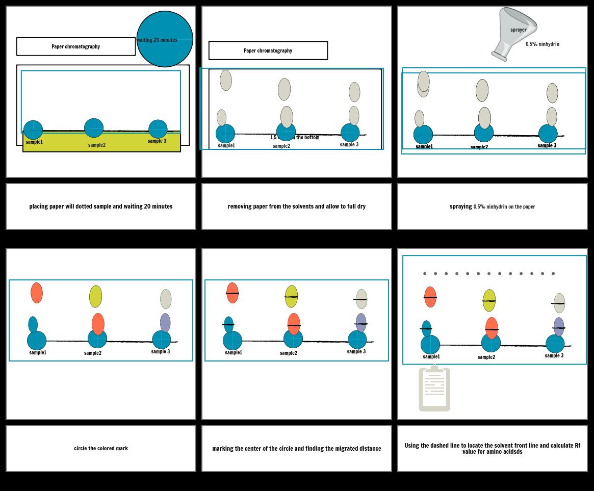 Procedure of paper chromatography