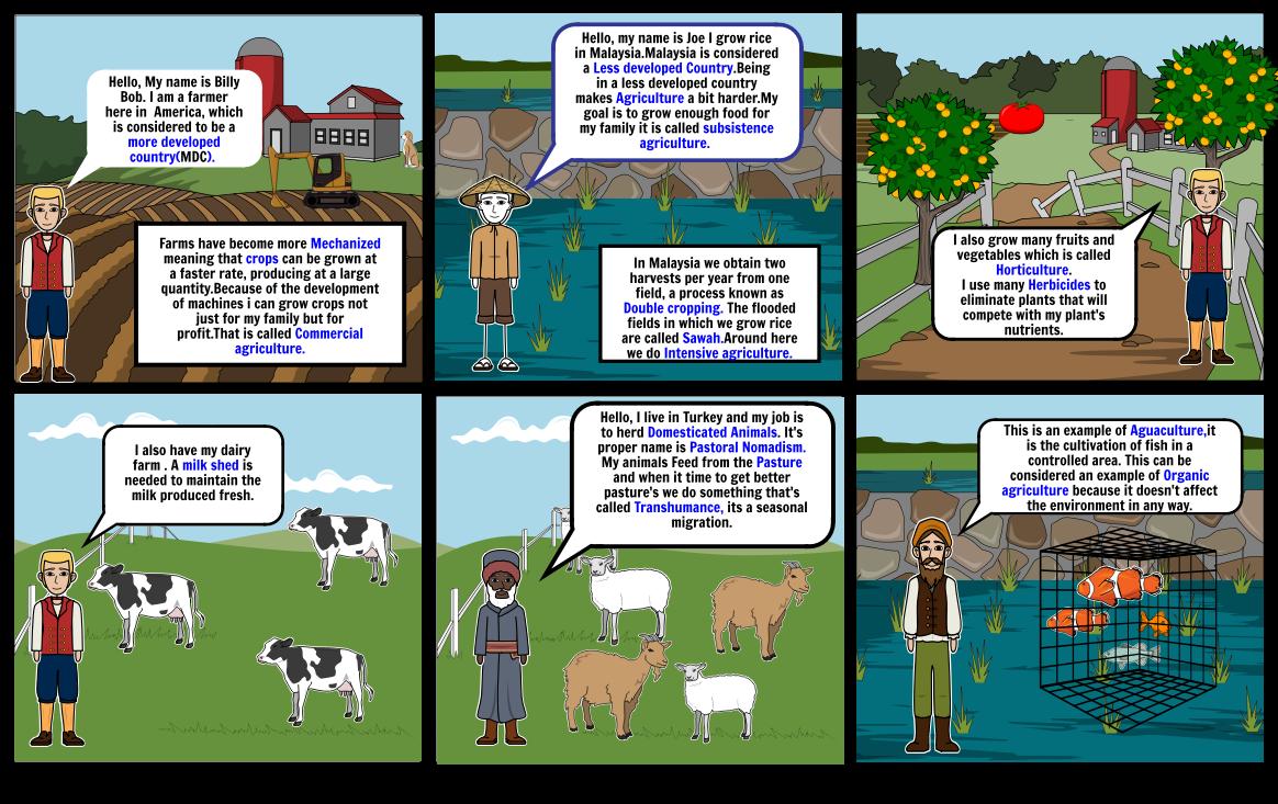Aphg Storyboard