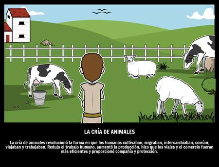 La Cría de Animales