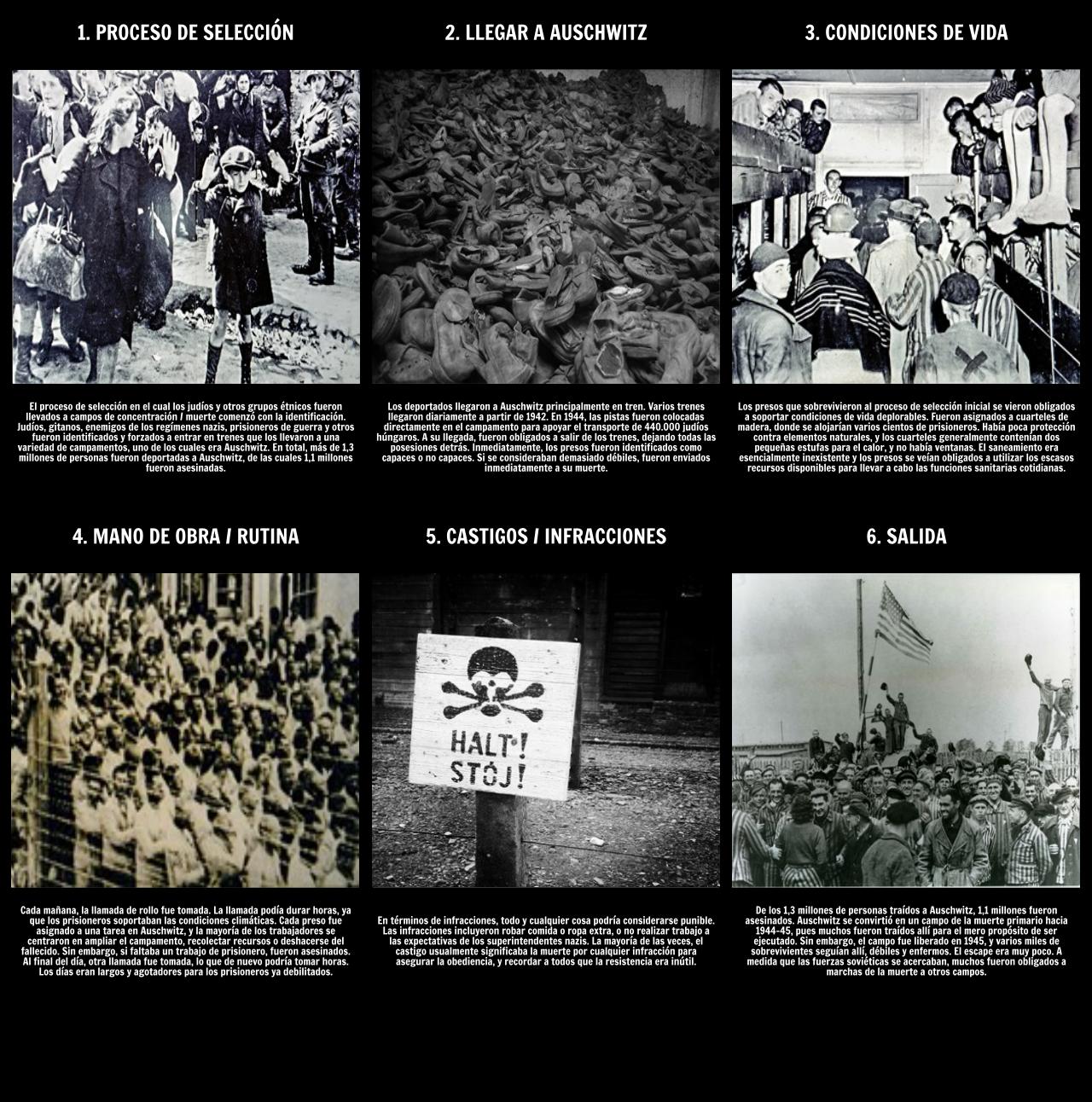 La Historia del Holocausto - La Vida en Auschwitz