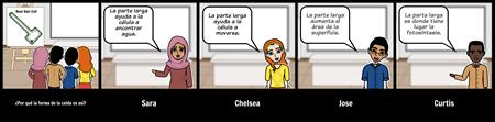 Storyboard de Debate - MS - Células Especializadas