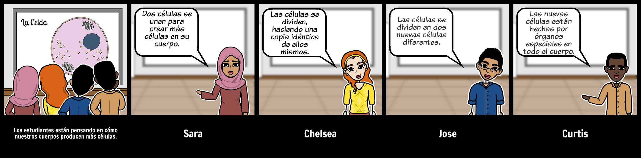 Storyboard de Discusión - HS - División Celular