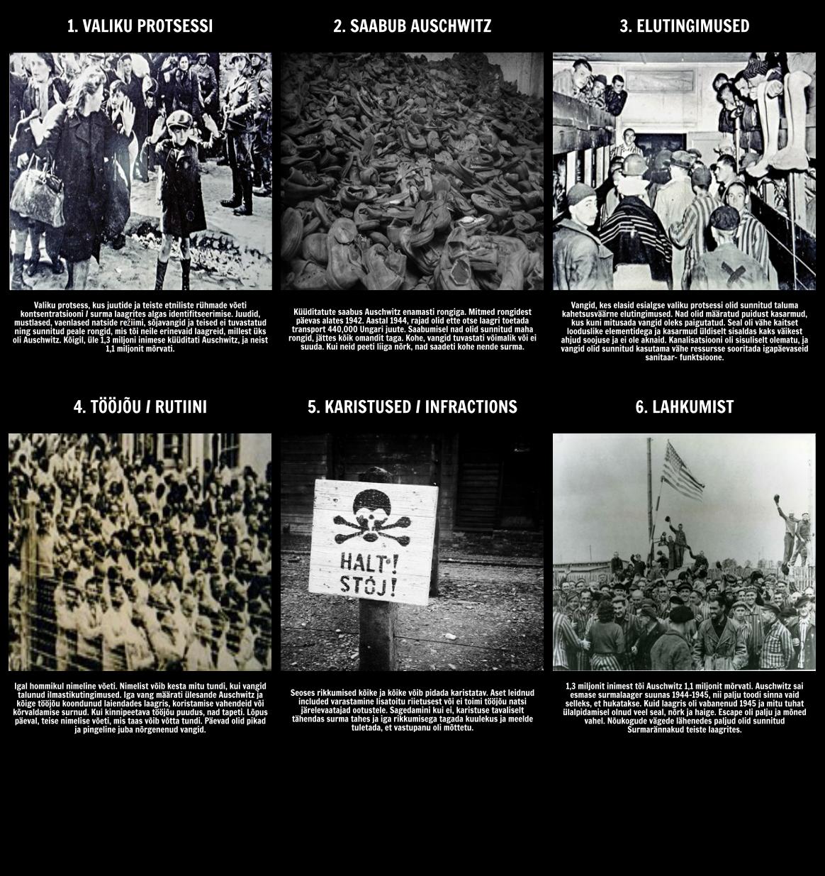 Ajalugu Holokausti - Life in Auschwitz