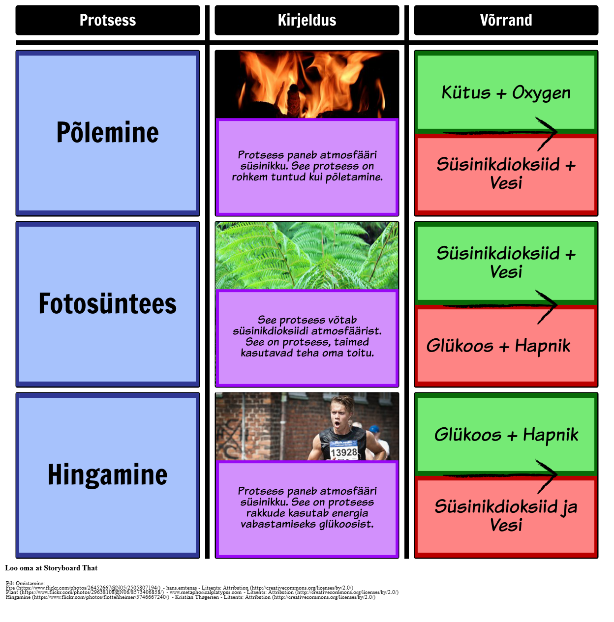 Protsessid, Süsinikuringet