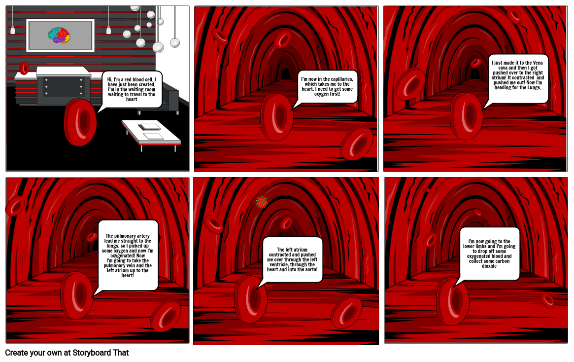 Red blood cell story
