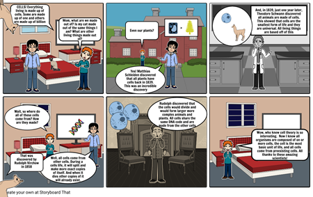Cell Theory Story Board