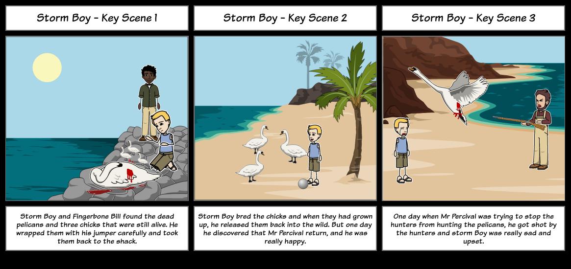 Storm Boy Storyboard