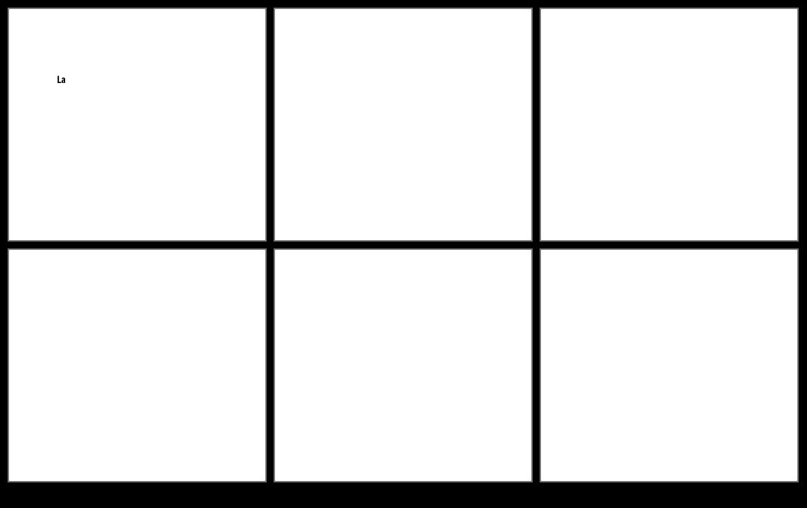 Blank 6 Cellule Narrative