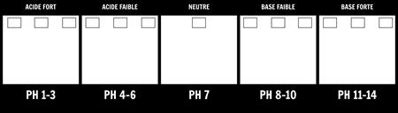 Modèle D'échelle de pH