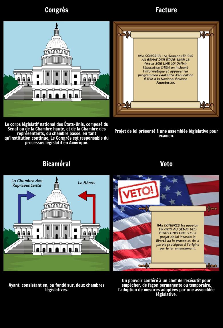Vocabulaire de la Branche Législative