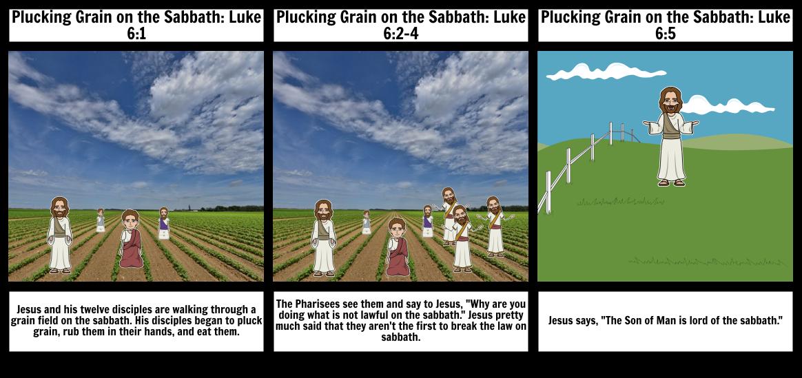 Plucking Grain: Matthew